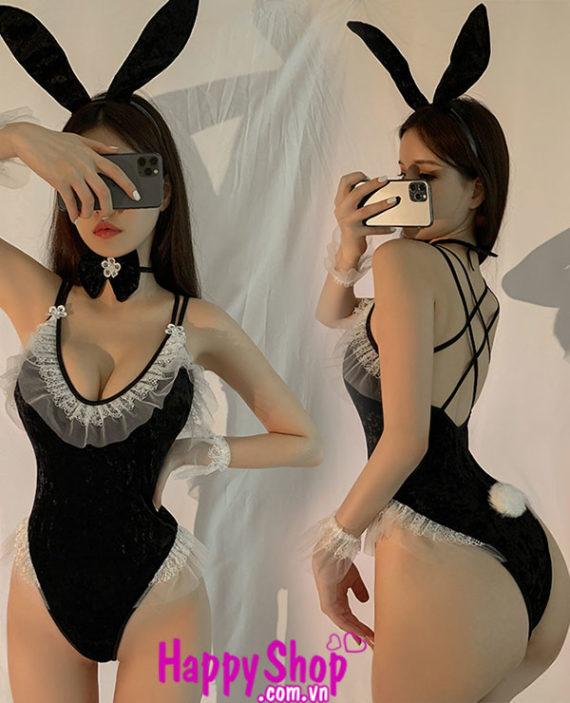 coslay thỏ